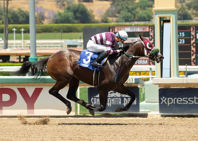 Rock-N-Rye Horse Race wins race