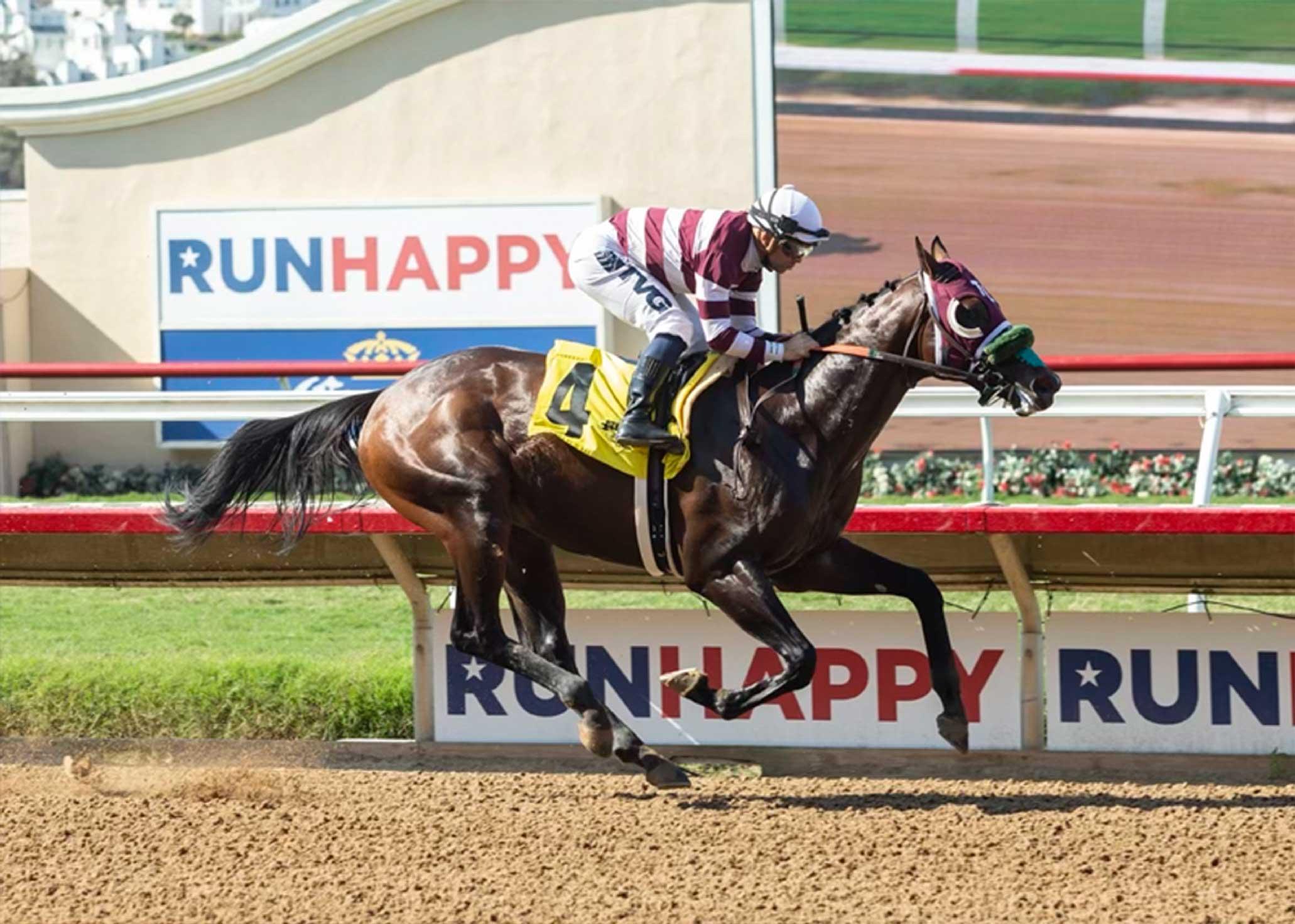 Lovacres Rock N Rye Racehorse