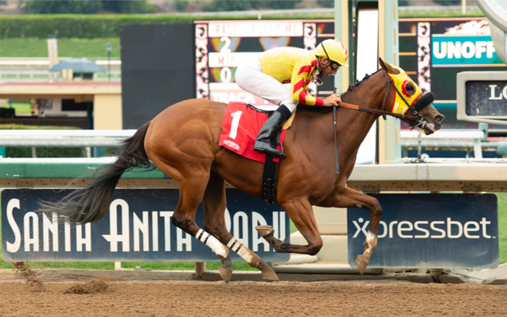 Lovacres homebred wins Maiden Special Weight at Santa Anita.
